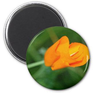 Orange Flower Magnet