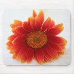 orange flower mouse mat