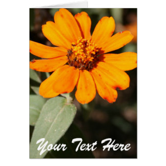 Orange Flower Template Card