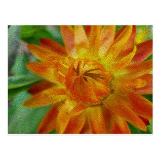orange flower.tif postcard