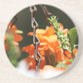 Orange flowers and rusted chain close up coaster