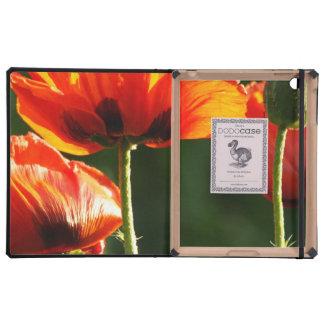 Orange Flowers in the Sun iPad Folio Case