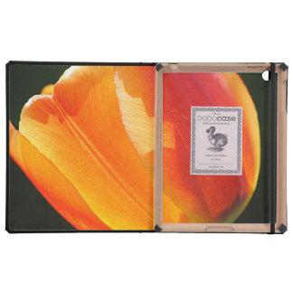 orange flowers mf covers for iPad