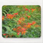 Orange flowers mouse mat