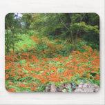Orange flowers mouse pads