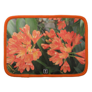 Orange Flowers Folio Planners