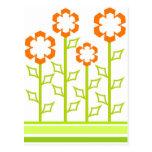 Orange flowers postcards