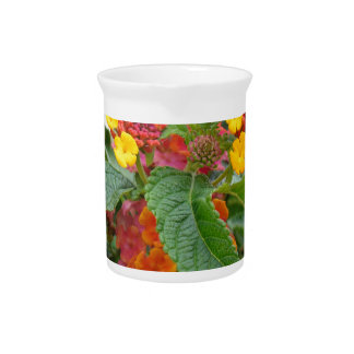 Orange flowers to make you happy beverage pitcher