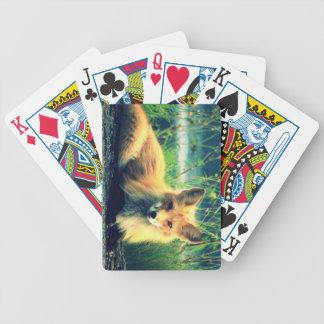Orange fox playing cards