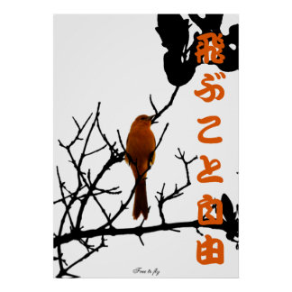 Orange free to fly poster