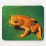 Orange Frog Mouse Pad