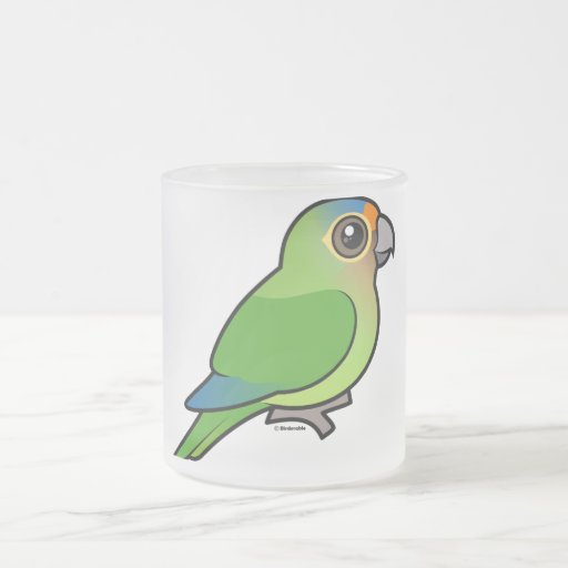 Orange-fronted Parakeet Frosted Glass Coffee Mug