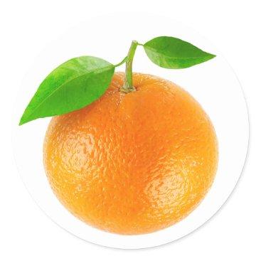 6hands Orange fruit classic round sticker