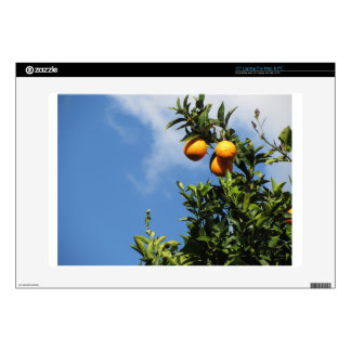 """Orange fruits hanging on the tree against the sky 15"""" laptop decal"""