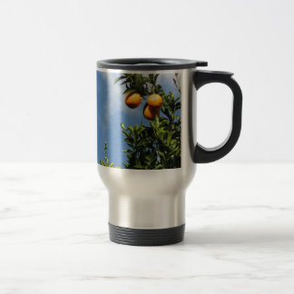 Orange fruits hanging on the tree against the sky travel mug