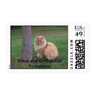 Orange Furball, Black and Orange Cat Foundation Postage Stamp