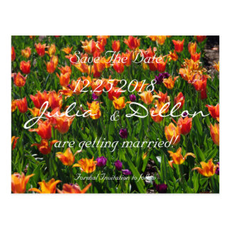 Orange Garden Save The Date Postcard
