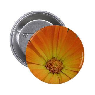 Orange Gerber Daisy 2 Inch Round Button