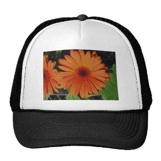 Orange Gerber Daisy Hat