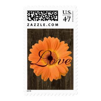 Orange Gerber Daisy Rustic Wood LOVE Postage Stamp