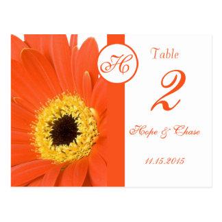 Orange Gerber Daisy Table Number Cards Postcards