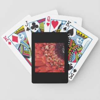 Orange Gerbera Daisy Bicycle Playing Cards
