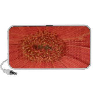 Orange Gerbera Daisy Doodle Mp3 Speaker