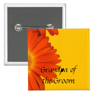 orange gerbera daisy flowers buttons. pin