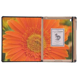 Orange Gerbera Daisy iPad Folio Case