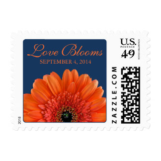 Orange Gerbera Daisy Navy Blue Love Blooms Wedding Postage Stamp