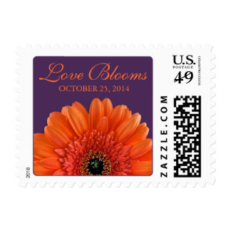 Orange Gerbera Daisy Purple Love Blooms Wedding Postage