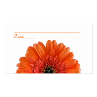 Orange Gerbera Daisy Special Occasion Place Cards Double-Sided Standard Business Cards (Pack Of 100)