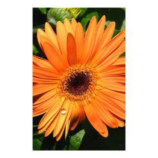 Orange Gerbera Daisy Stationery Design