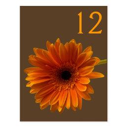 Orange Gerbera Daisy Table Number Card