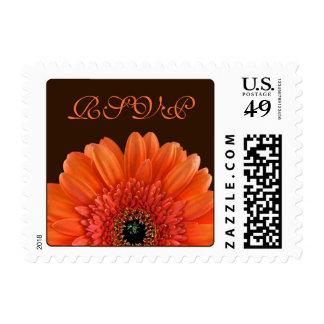 Orange Gerbera Flower Brown Wedding RSVP Postage