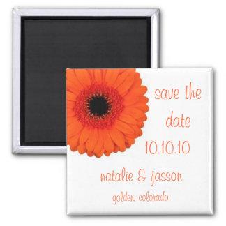 Orange Gerbera  Save the Date 2 Inch Square Magnet