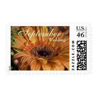 Orange Gerbera • September Wedding Stamp