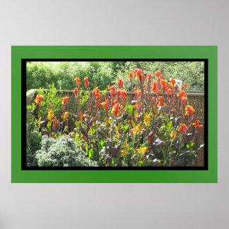 Orange Gladiola Flowers Poster