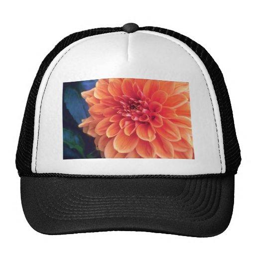 Orange Glorious orange flowers Mesh Hats