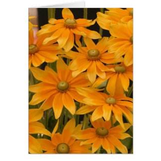 Orange Glory Card