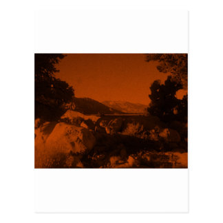 Orange Glow Postcard