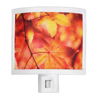 Orange Golden Maple Autumn Leaves Night Light