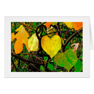"""ORANGE, GREEN AND YELLOW LEAVES"" (DIGITAL MANIP.) CARD"