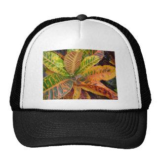 Orange Green Leaves Hat