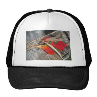 orange green, yellow and fall leaf and dried grass mesh hat