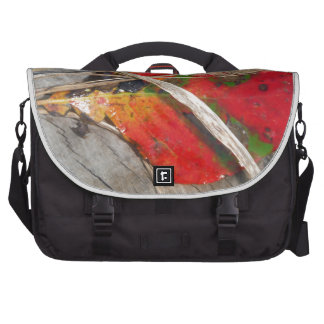 orange green, yellow and fall leaf and dried grass laptop bags