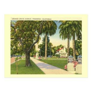 Orange Grove Ave., Pasadena, California Vintage Postcard