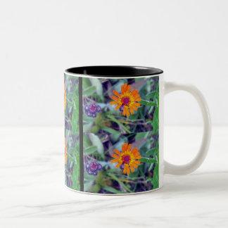 Orange Hawkweed 1 Mug