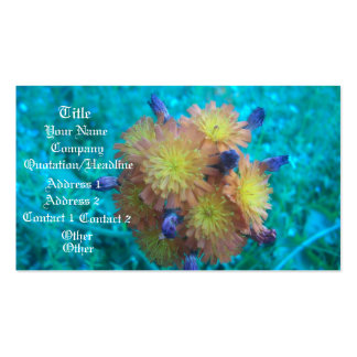 Orange Hawkweed Clusters Double-Sided Standard Business Cards (Pack Of 100)