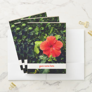 """Orange Hibiscus and '' Your Name Here """" Pocket Folder"""